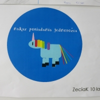 20386-31125-30716_skakanka