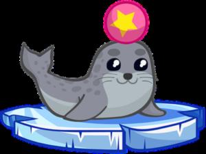 foka-smieszka-medium